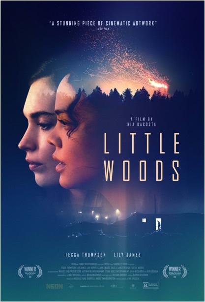 Little Woods 2018 DVDRip x264-LPD[EtMovies]