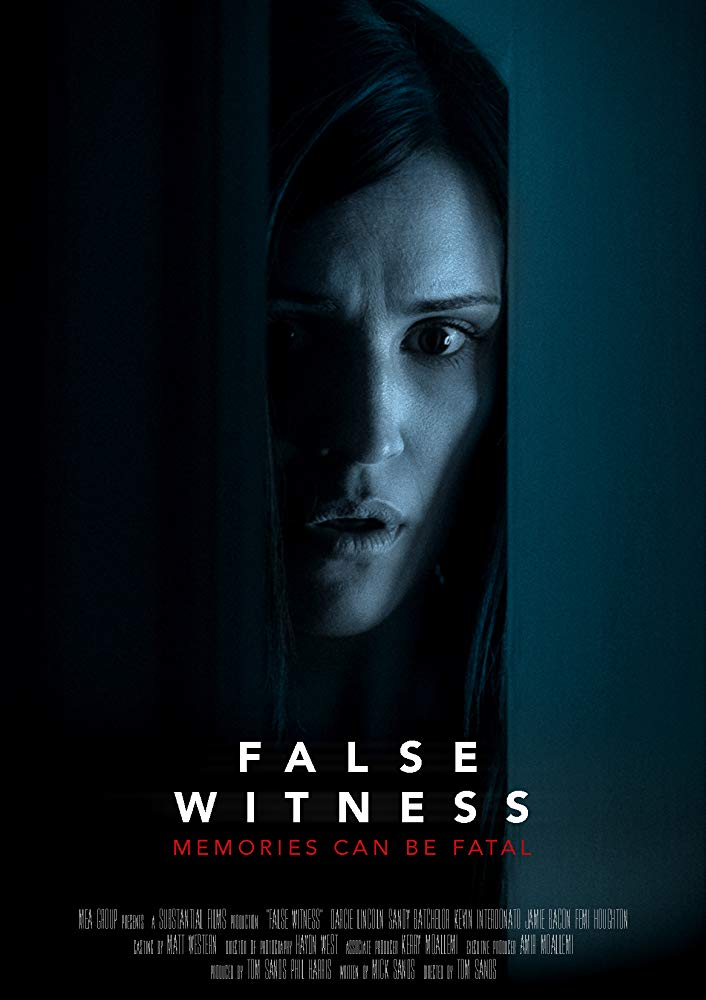 False Witness 2019 HDRip XviD AC3-EVO