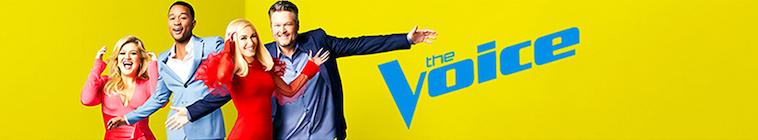 The Voice S17E07 720p WEB h264-TBS
