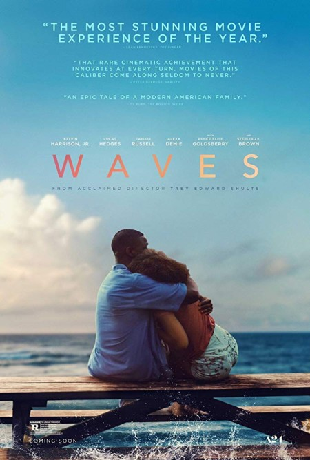 Waves (2019) 720p WEBRip X264 AC3-EVO