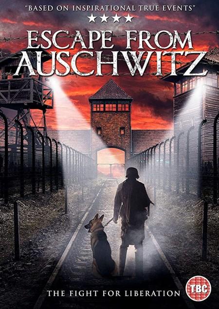 Escape From Auschwitz 2020 1080p WEB-DL H264 AC3-EVO