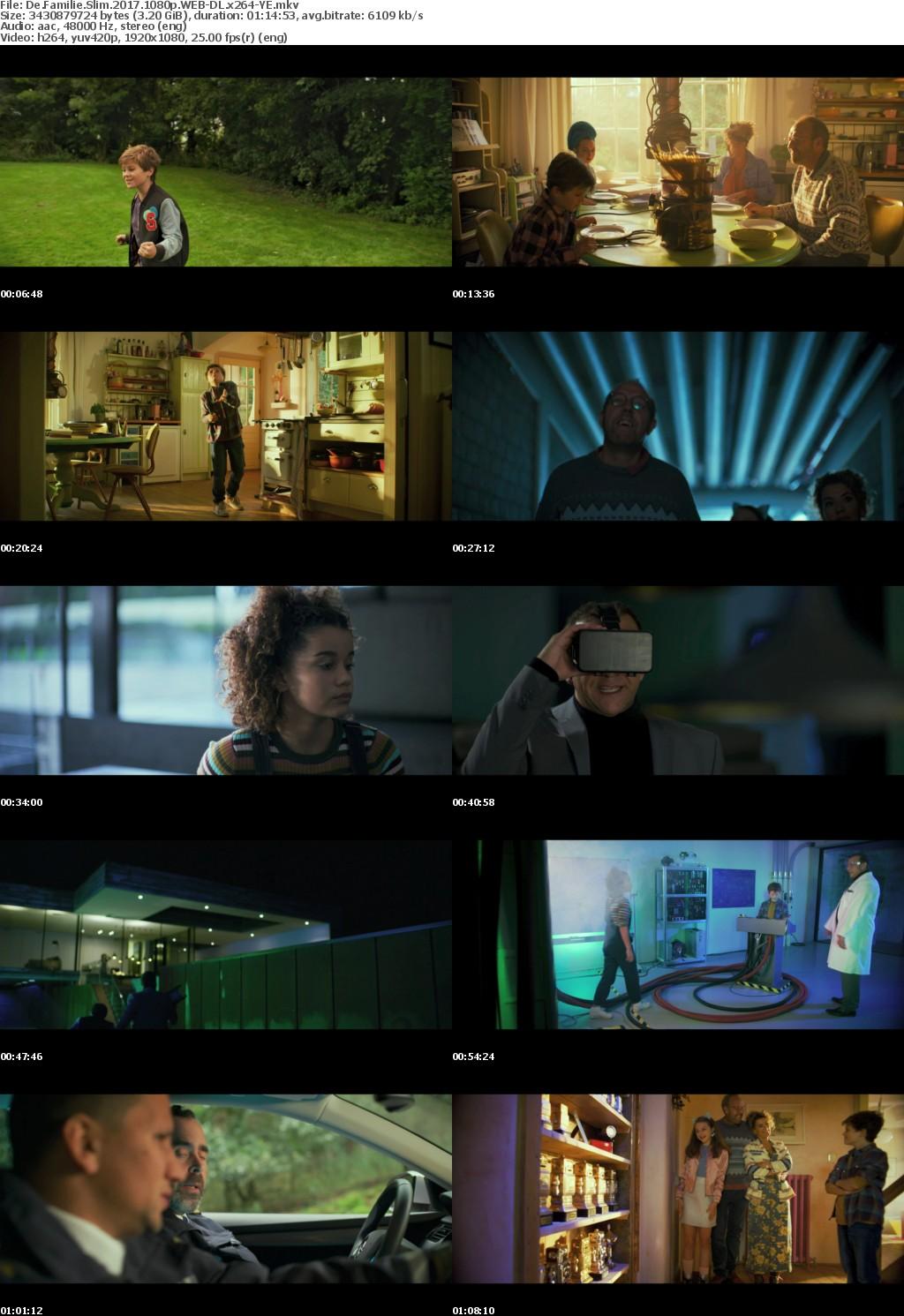 De Familie Slim (2017) 1080p WEB-DL x264-YE