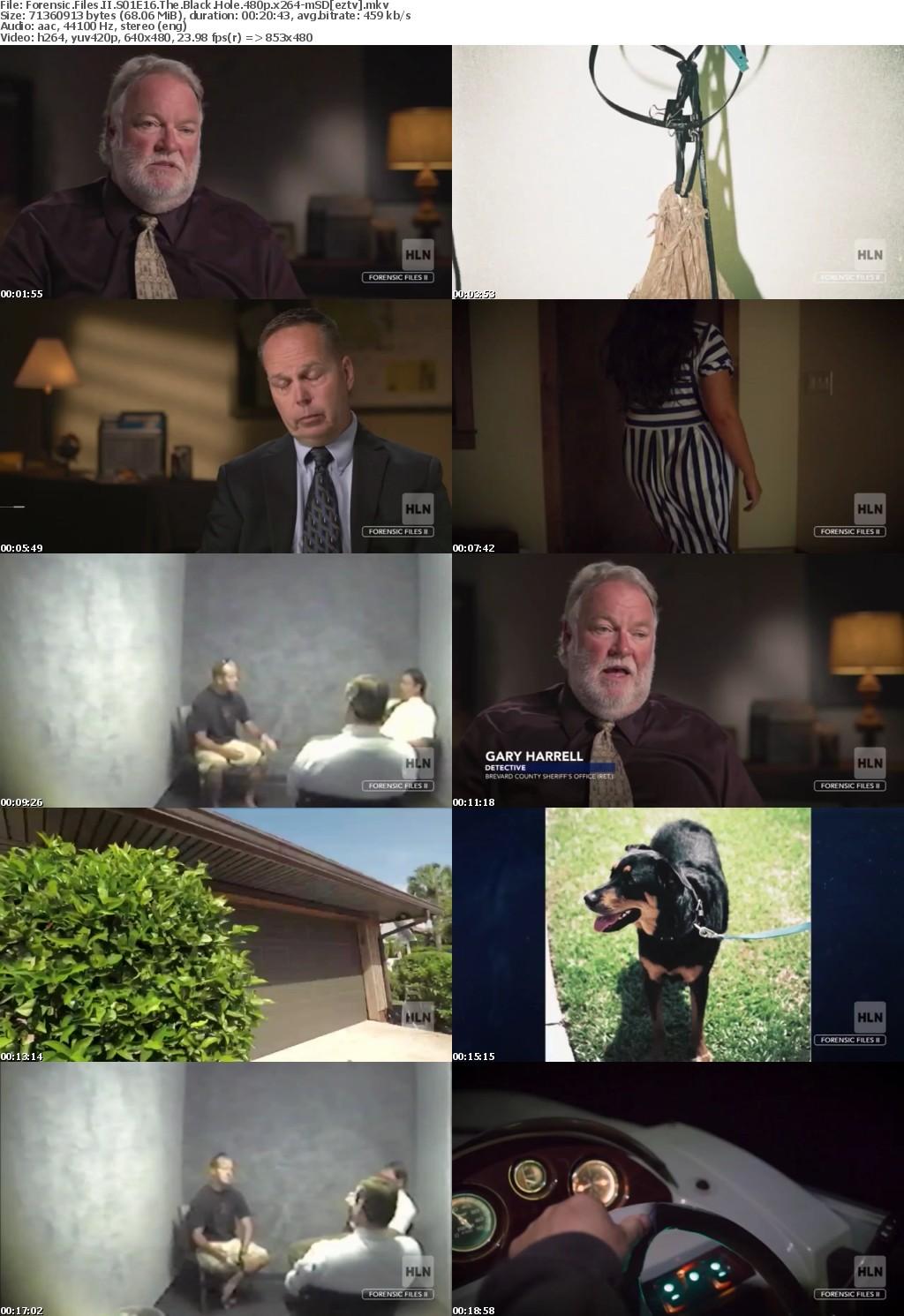 Forensic Files II S01E16 The Black Hole 480p x264-mSD