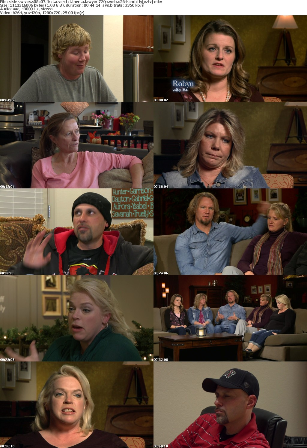 Sister Wives S08E07 First a Verdict Then a Lawyer 720p WEB x264-APRiCiTY
