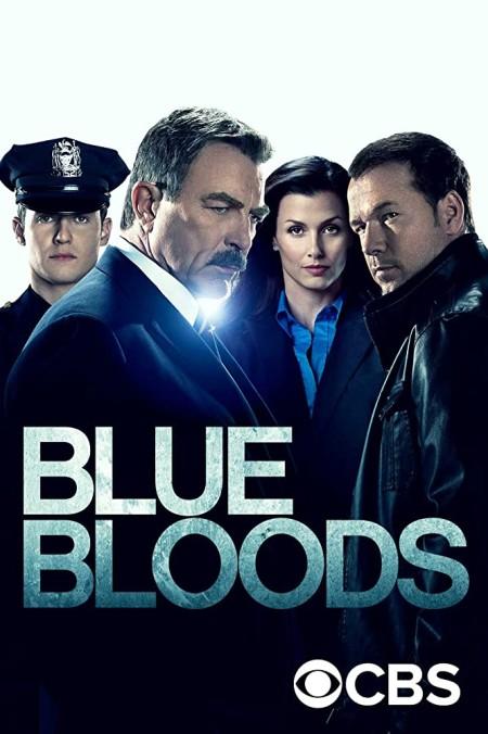 Blue Bloods S10E18 HDTV x264-SVA