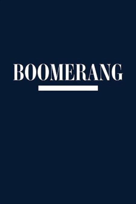 Boomerang 2019 S02E07 WEB x264-XLF