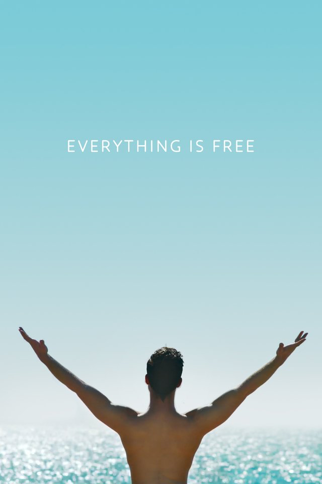 Everything Is Free 2017 WEBRip x264-ION10