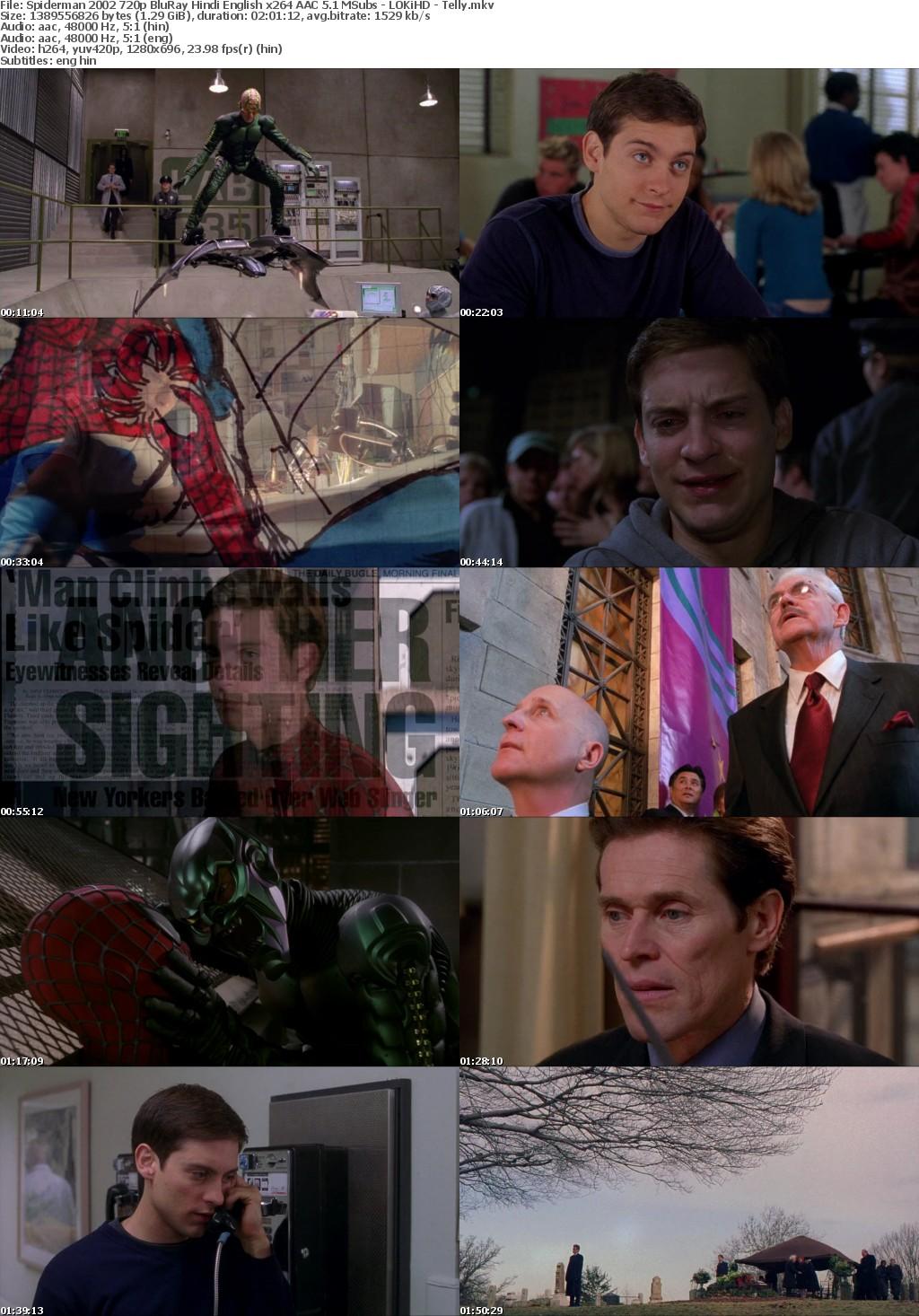 Spiderman (2002) 720p BluRay Hindi English x264 AAC 5.1 MSubs - LOKiHD - Telly