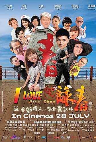 I Love Wing Chun 2011 CHINESE 1080p BluRay x265-VXT