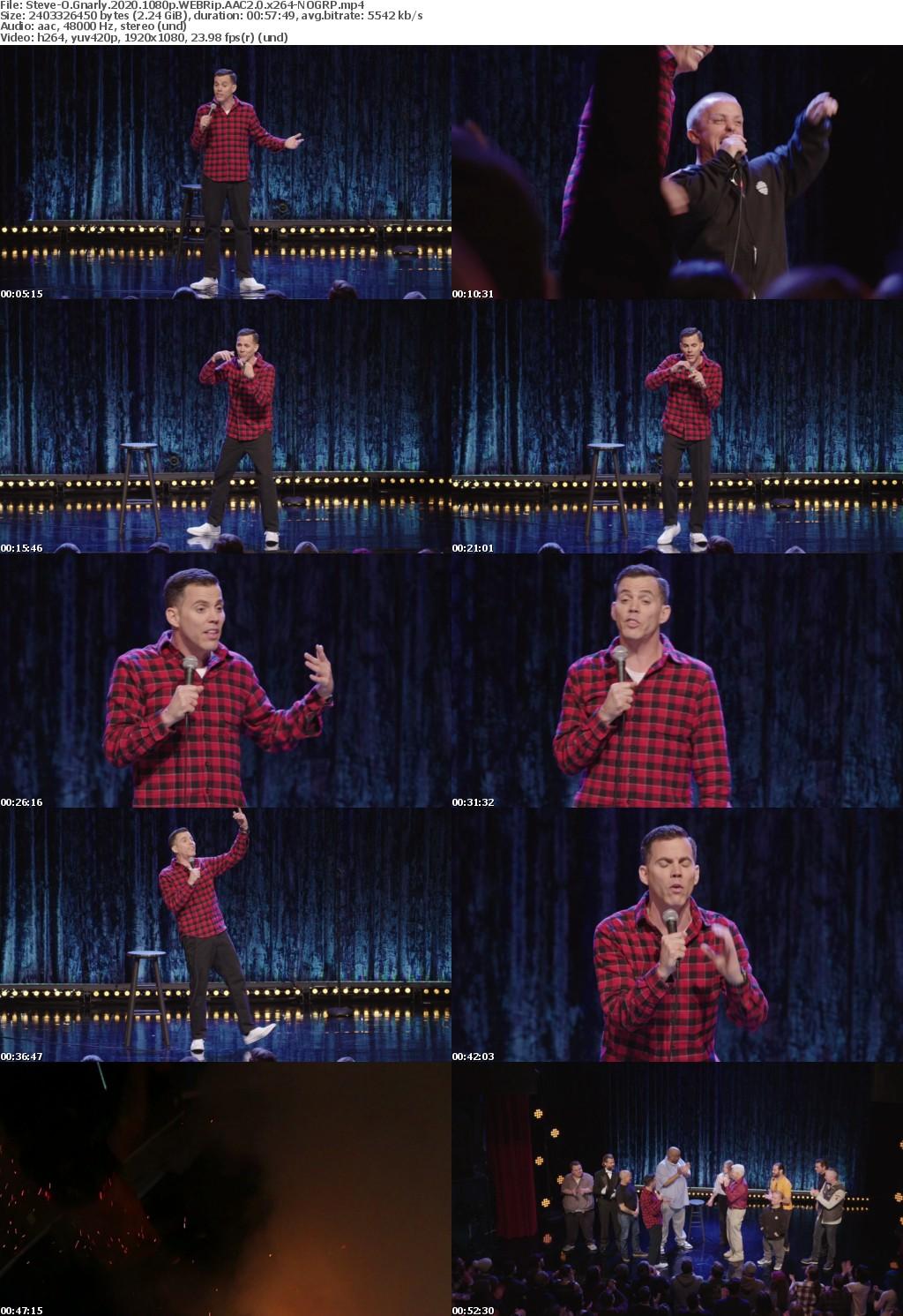 Steve-O Gnarly 2020 1080p WEBRip AAC2 0 x264-NOGRP