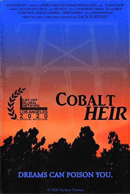 Cobalt Heir 2020 HDRip XviD AC3-EVO