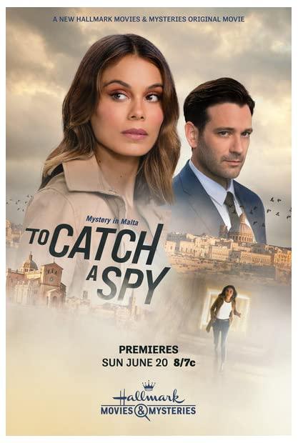 To Catch A Spy 2021 1080p WEBRip HEVC x265-RMTeam